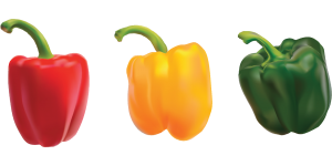 dogs can eat bell pepper of any color
