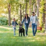 Black German Shepherd with family in the park