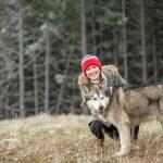 Alaskan Malamute (12)