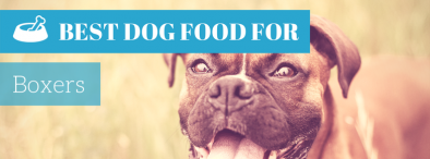Best Dog Food For Boxers (2017's TOP 4)