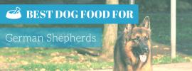 Best Dog Food for German Shepherds (TOP 4 in 2017)