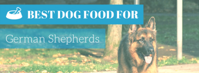 Best Dog Food for German Shepherds 2017 Comparisons and Reviews