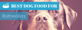 Best Dog Food For Rottweilers (Best of 2017)