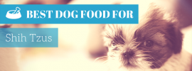 Best Dog Food for Shih Tzus (TOP 4 in 2017)