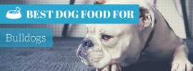 Best Dog Food For Bulldogs (TOP 4 picks in 2017)