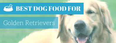 What Is The Best Dog Food For Golden Retrievers in 2017?