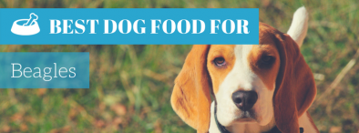 What is The Best Dog Food For Beagles in 2017?