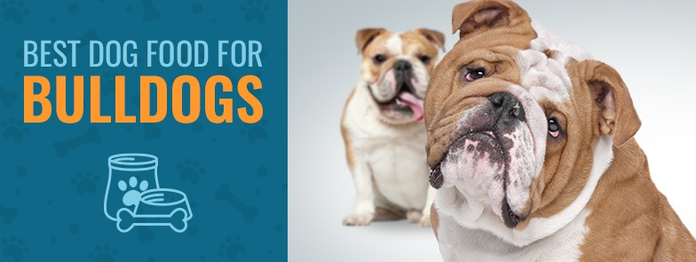 Best Dog Food For Bulldogs Top 4 Picks In 2019 Animalso