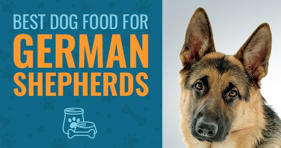 Best Dog Food For German Shepherds 2019 Comparisons And Reviews