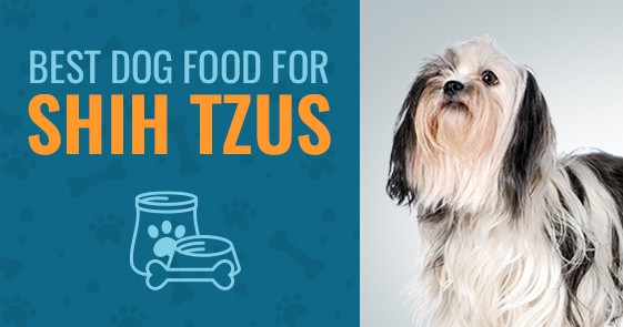Best Dog Food For Shih Tzus Top 4 In 2019 Animalso
