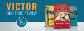 Victor Dog Food Review, Recalls & Ingredients Analysis in 2017