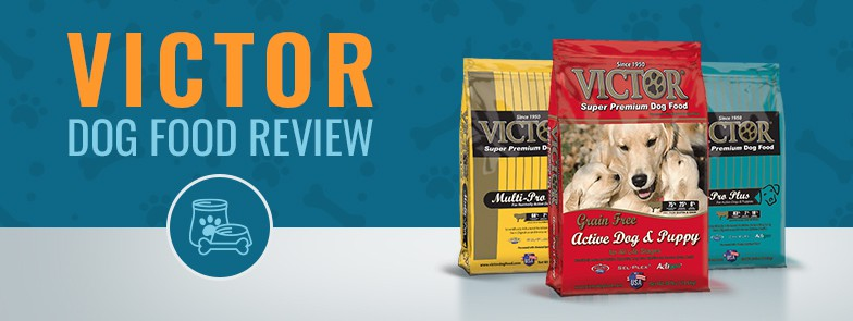 Victor Dog Food Review Rating Recalls | Upcomingcarshq.com