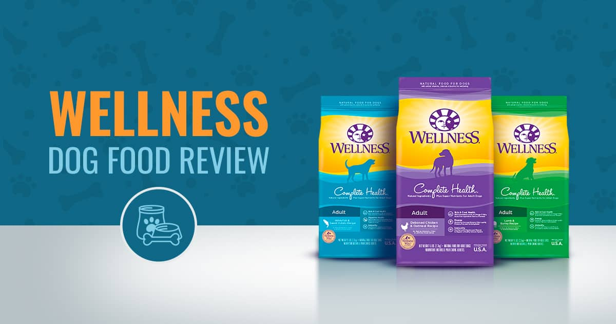 Best Dog Foods Reviews 2018 Animalso