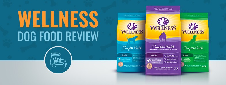 Wellness Toy Breed Dog Food Reviews Wow Blog