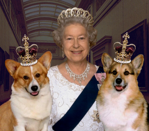 Queen Elizabeth II and Corgies