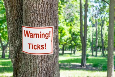 Sign warning of ticks on a tree