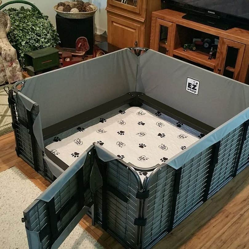A steel cage whelping box with a door and washable linings