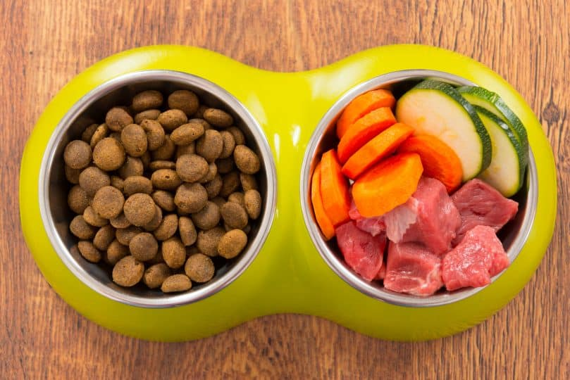 Natural food in a bowl as opposite of dry dog food