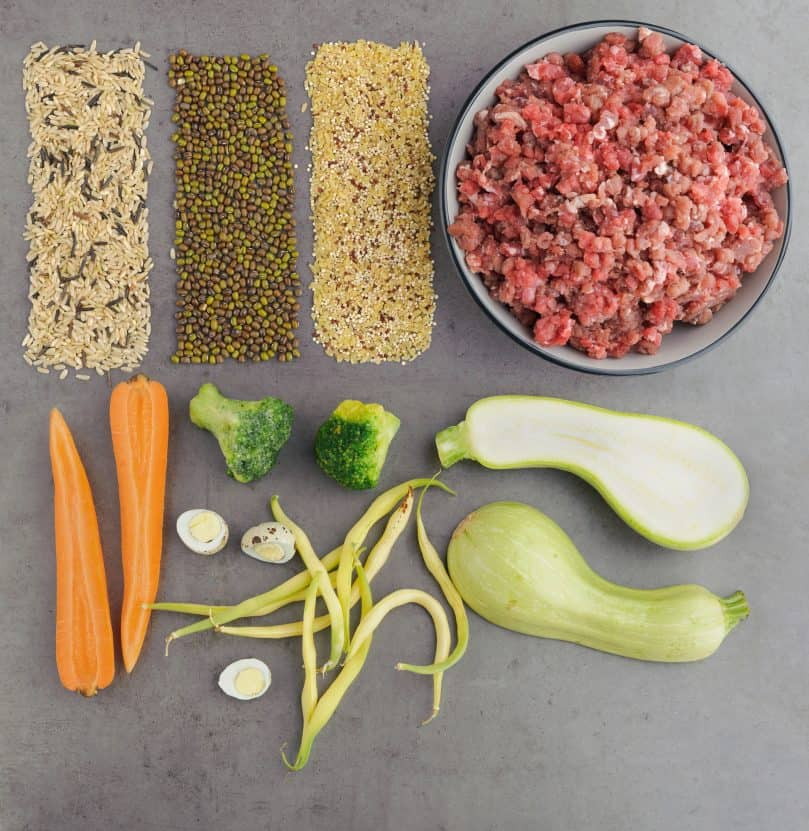 Natural raw ingredients for a raw diet pet food on grey background. Flat lay.