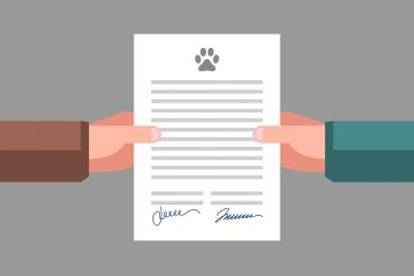 Document in hands. Signed pet adoption or sale agreement