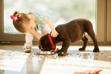 photo of a little girl feeding a puppy