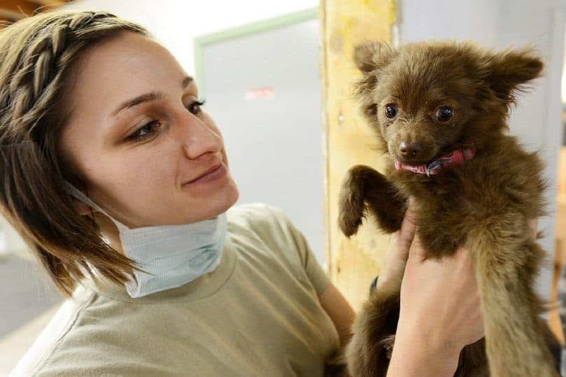 a smiling veterinarian holding a brown puppy