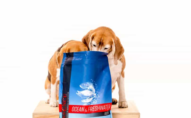 Two Beagles eating from a bag of Essence Ocean & Freshwater recipe dog food