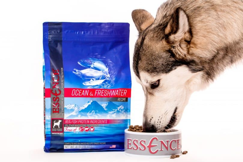 A 4 lb bag of Essence Ocean & Freshwater recipe dog food