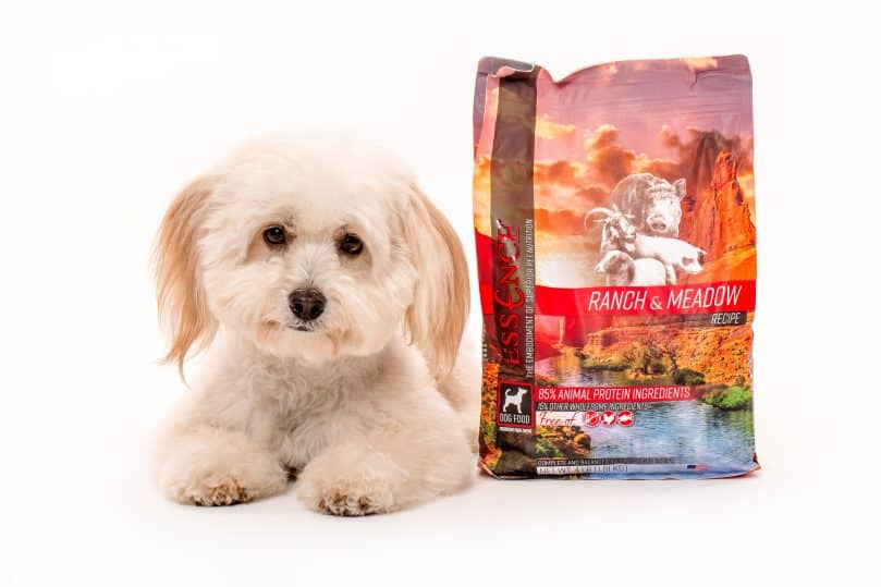 A Shih Tzu sitting beside a bag of Essence Ranch & Meadow recipe dog food