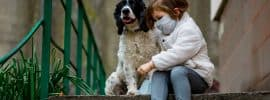 Can dogs get the coronavirus (COVID-19)?